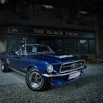 Mustang-BlackCrow-web